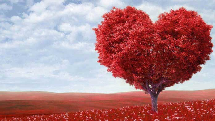 Câu nói hay về cuộc sống và tình yêu