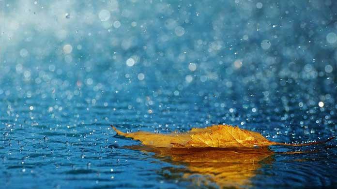 Những câu nói hay về mưa